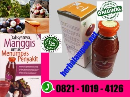 Herbal Untuk Kanker Payudara Stadium 4