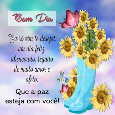 Eu só vim te desejar um dia feliz,   abençoado, regado de muito amor e afeto.  Que a paz esteja com você!  Bom Dia!
