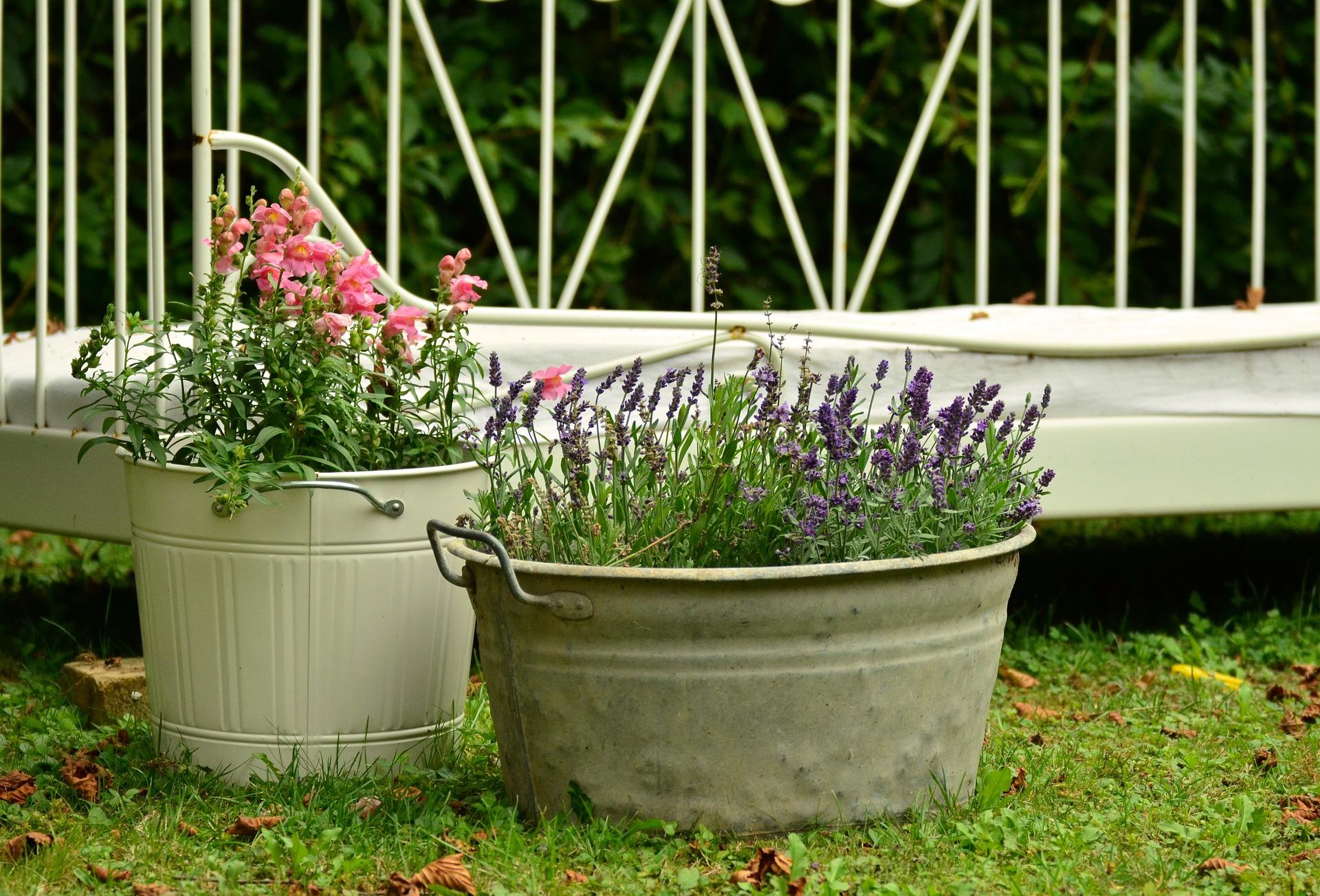Makes Your Garden Rich