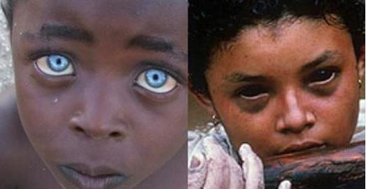 Ces yeux ont vu des atrocités perverses. La n°13 est particulièrement démente!