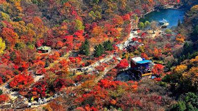 Mountain Naejang