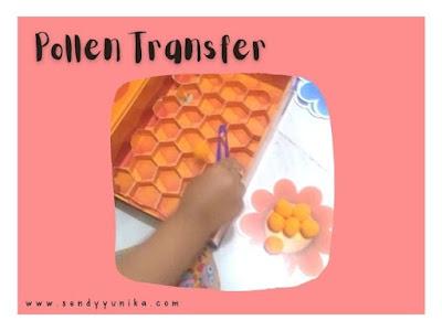 pollen transfer