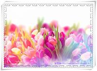 12140792_1096121830457645_5123098606432830689_n_meitu_1_meitu_2.jpg