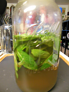 How to make Natural Mint Syrup. Nothing artificial, no added colors.