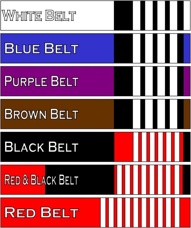 06013ade5c00 team-tatamet  Les ceintures de Jiu Jitsu Brésilienteam-tatame