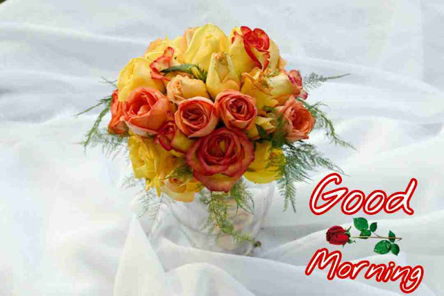 Beautiful good morning pictures with rose flowers bouquet