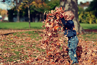 Young blond haired boy in jeans and a blue shirt playing in a pile of brown leaves, Photo by Scott Webb on Unsplash