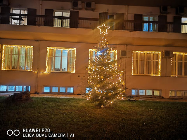 Στο Γηροκομείο άναψε το πρώτο Χριστουγεννιάτικο δέντρο στο Ναύπλιο
