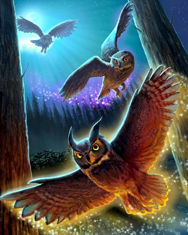 09-The-return-of-the-owls-Jeremy-Norton-www-designstack-co