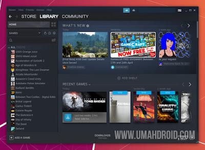 Tampilan Steam pada Ubuntu 20.04 LTS