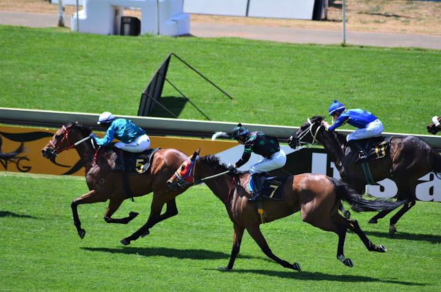 Last Few Seconds at Turffontein Racecourse #Joburg #SA #PhotoYatra #TheLifesWayCaptures
