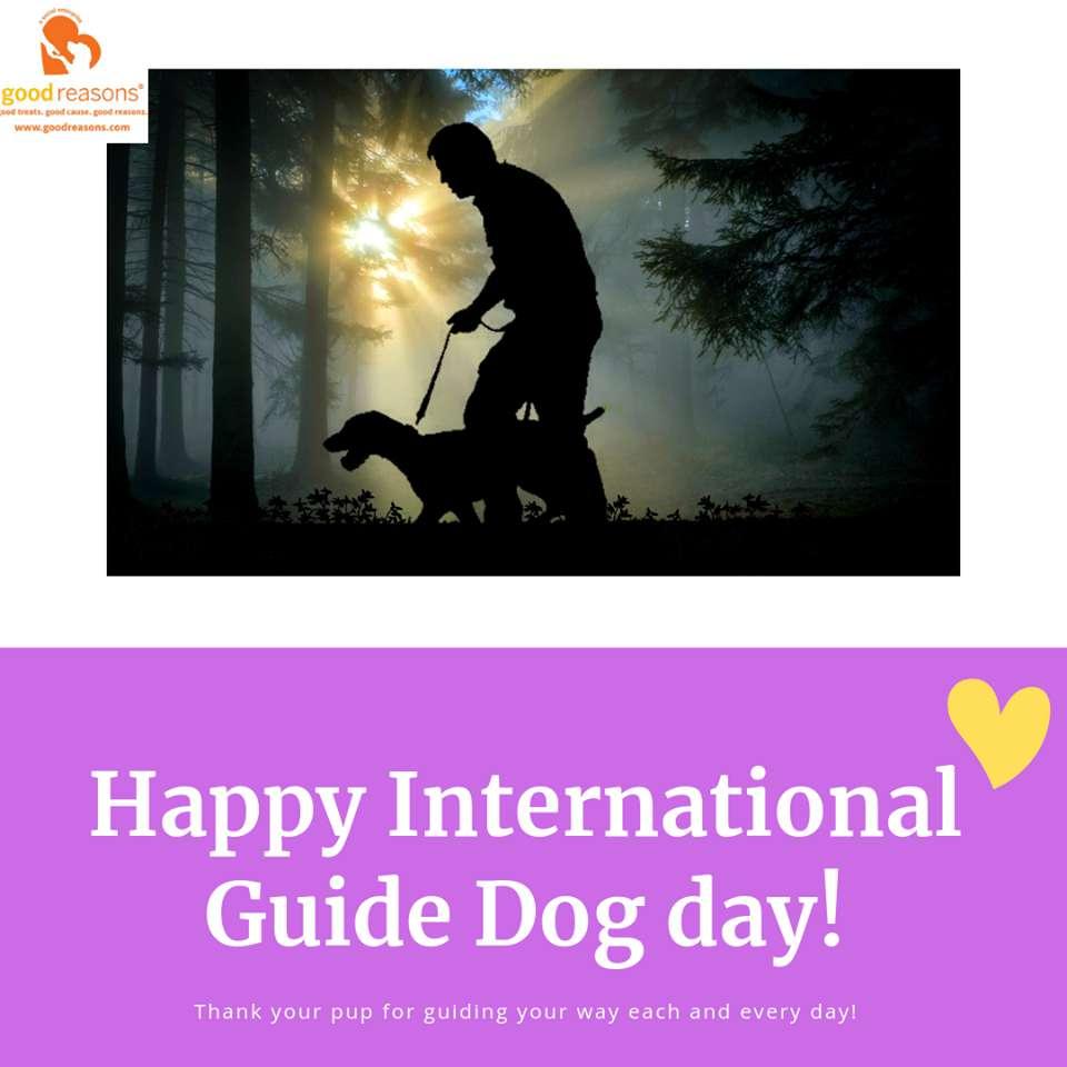 International Guide Dog Day Wishes Beautiful Image