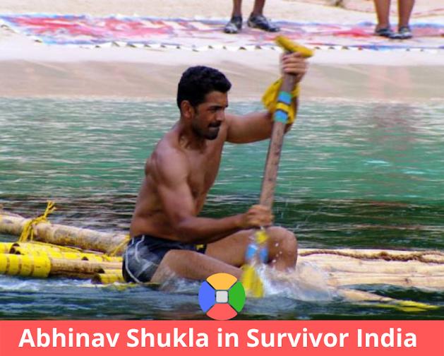 Survivor-India-task