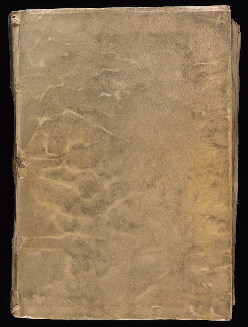 Voynich Elyazması kitabın ön kapağı...