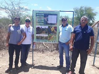 Agricultores de Sossego participaram de estágio sobre palma resistente na fazenda pendência