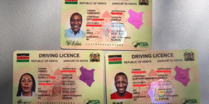 smart driving license