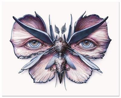 Lepidoptera 6 & 7 Giclee Prints by N.C. Winters