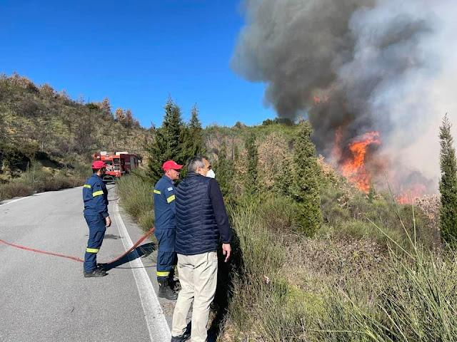 Μεγάλη πυρκαγιά στην Αρκαδία - Στην κατασβεση και εναέρια μέσα