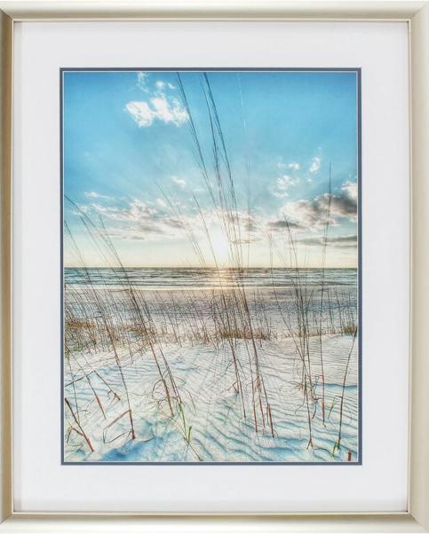 Beach Dune Grass Art Prints Posters
