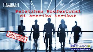 Fully Funded: Pelatihan Profesional ke Amerika Serikat