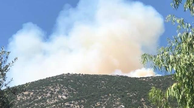 Τεράστια κινητοποίηση για την φωτιά στο Κολιάκι Επιδαύρου στην Αργολίδα