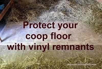 vinyl on coop floor