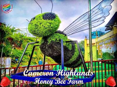 Ee Feng Gu Honey Bee Farm, Cameron Highlands