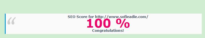 seo, 100%, blog