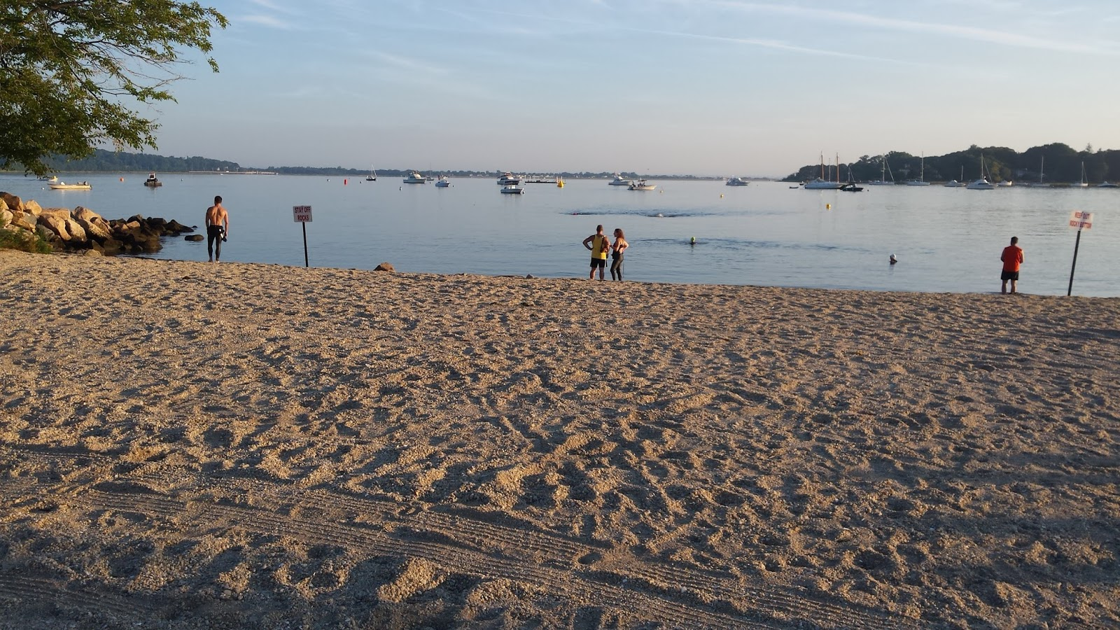Long Island Carece