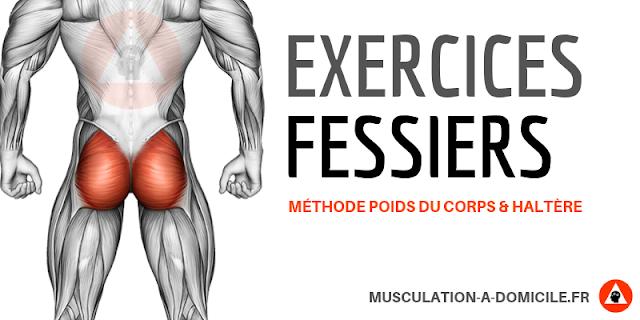 musculation à domicile exercices musculation fessiers à poids du corps et haltère
