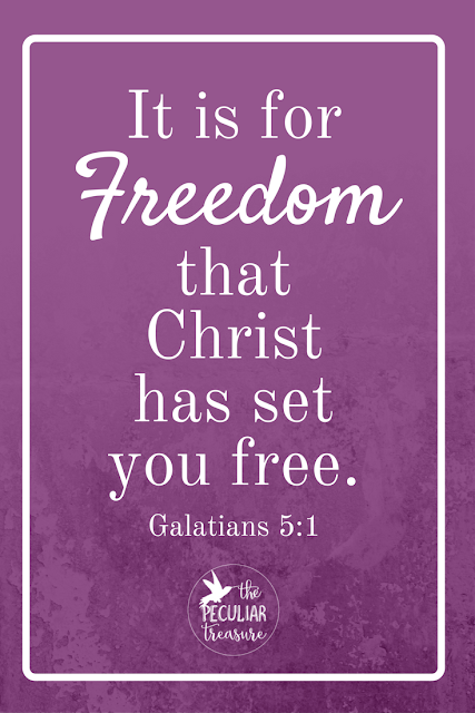 Christ set us free so that we could have true freedom. Read more to find out what that means and how to obtain it!