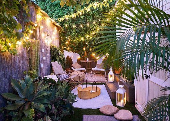 13 Tanaman yang Cocok Ditanam di Taman Depan Rumah Anda, Yuk Intip!
