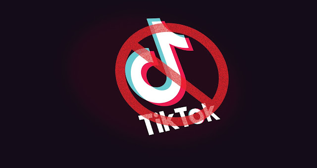 ban the tiktok, tiktok vs youtube controversy, amir siddiqui vs carryminati controversy, tiktok