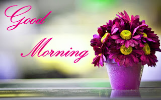 Awesome Good Morning Picture 2020