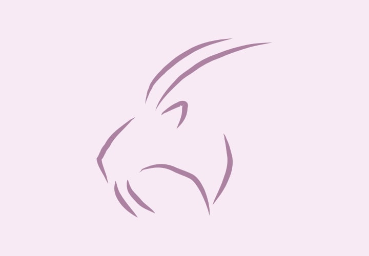 Horoscop Capricorn 2022
