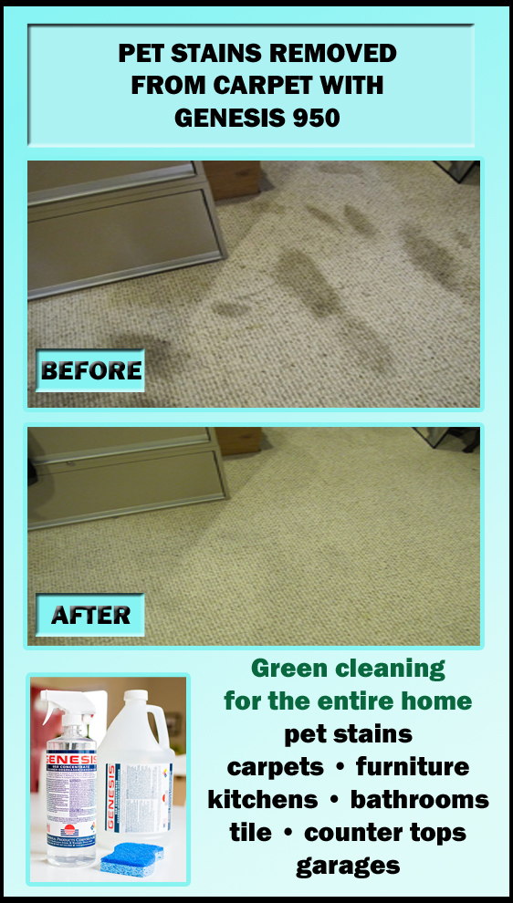 Genesis 950 Cleaning Tips And Tricks: Remove Pet Stains