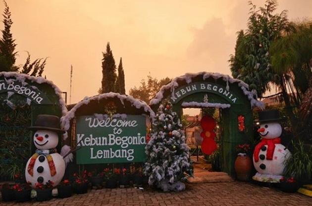 Hamparan Warna Warni Bunga, Kebun Begonia Bandung