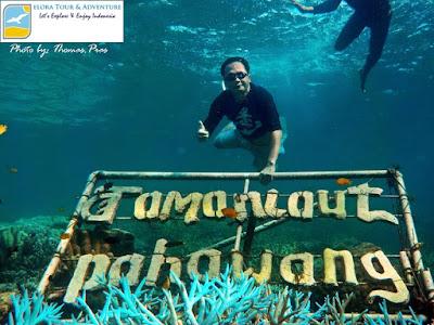 spot snorkeling jalarangan pahawang besar