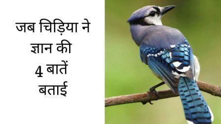 चिड़िया का ज्ञान chidiya ka gyaan