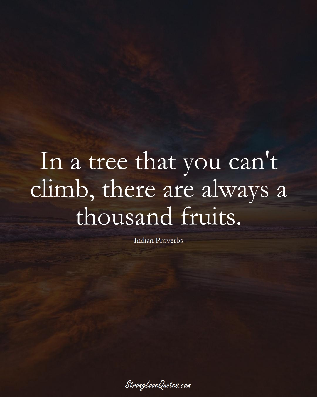 In a tree that you can't climb, there are always a thousand fruits. (Indian Sayings);  #AsianSayings