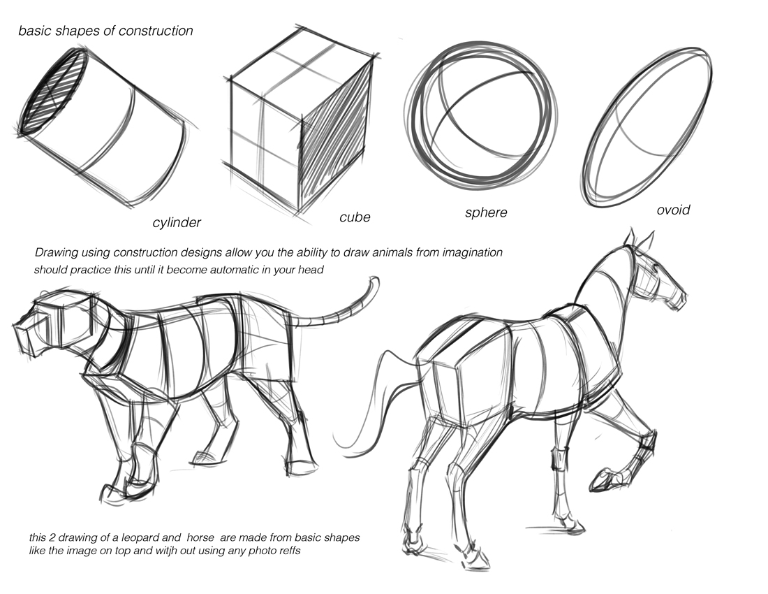 "Concept Design Academy: ""Animal Anatomy"" with Jonathan Kuo~!!"