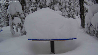 11 inches of snow on the Monarch marker.