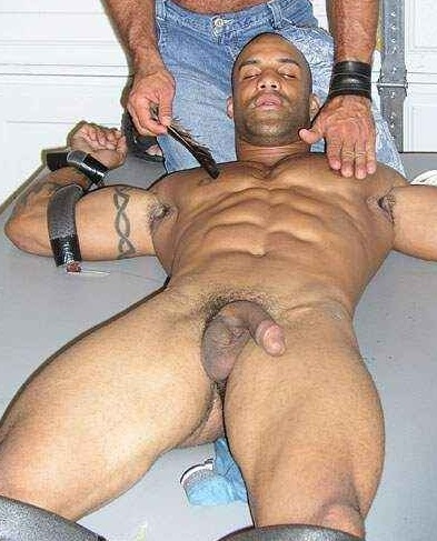 Bdsm Black Gay