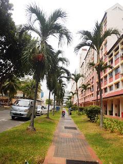 Kawasan Hostel Murah di Singapore