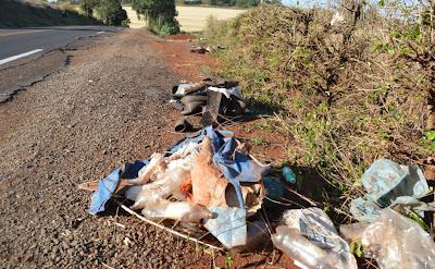 Resultado de imagem para lixo estrada borrazopolis