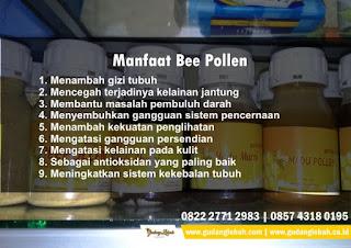 bee pollen kesuburan, bee pollen plus kesuburan, bee pollen untuk kesuburan, cara mengkonsumsi bee pollen untuk kesuburan, khasiat bee pollen untuk kesuburan, manfaat bee pollen bagi kesuburan,