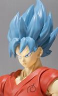 Goku Super Saiyen God Super Saiyen