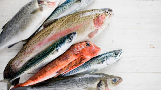 Crna lista: 8 vrsta riba koje treba izbjegavati