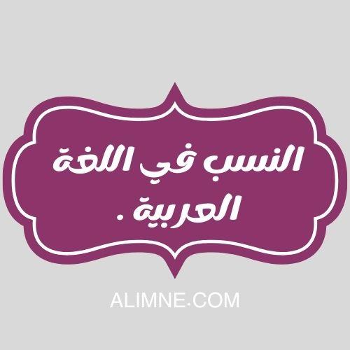 النسب في اللغة العربية .