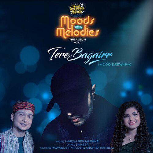Tere Bagairr Lyrics - Pawandeep Rajan & Arunita Kanjilal   Moods
